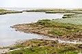 Saltholm - panoramio (7).jpg