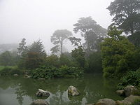 San Francisco Botanical Garden.jpg