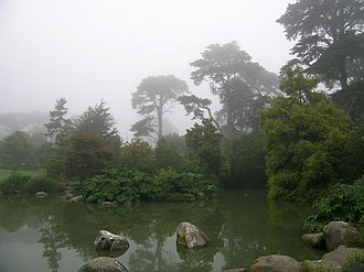 San Francisco Botanical Garden - McBean Wildfowl Pond and Primitive Plant Garden at SF Botanical Garden