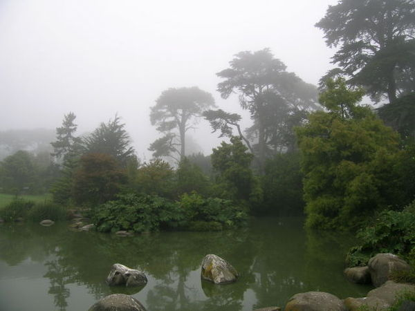 Botanical gardens in california for San francisco botanical gardens