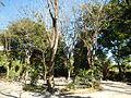 San Miguel, Bulacan6419 02.JPG