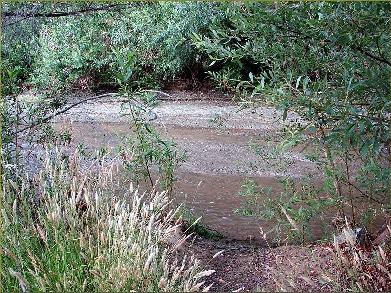 File:San Timoteo Creek 5-19-13 (9017440033).jpg