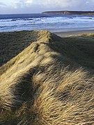 Sand dunes, Dunnet Bay, Caithness - geograph.org.uk - 107200.jpg
