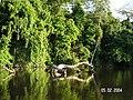 Sandoval , Tambopata - panoramio (23).jpg