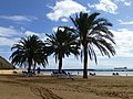 Santa Cruz de Tenerife, Spain - panoramio (9).jpg