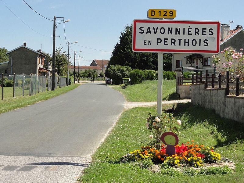 Savonnières-en-Perthois (Meuse) entrée