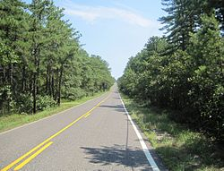 Savoy Boulevard through the Pine Barrens in Woodland Township