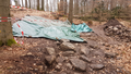 Schlitz Bad Salzschlirf Excavation Saengersberg Basaltfelsen Det 201803 SE.png