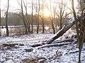 Schneereicher Uferweg am Teltowkanal (Snowy Path by the Teltow Canal) - geo.hlipp.de - 32143.jpg