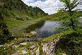 Schobersee 93185 2015-06-26.JPG