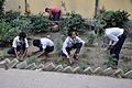 School Students Planting Polianthes tuberosa - Ramakrishna Mission Ashrama - Sargachi - Murshidabad 2014-11-11 8975.JPG