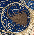 "Scorpio - Horoscope from 'The book of birth of Iskandar"" Wellcome L0040139.jpg"