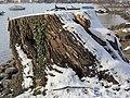 Seefeldquai 2011-12-19 13-01-34 (SX230).JPG