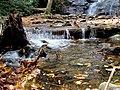 Setrock Creek Falls Black Mountain Campground Pisgah Nat Forest NC 4391 (37947699961).jpg