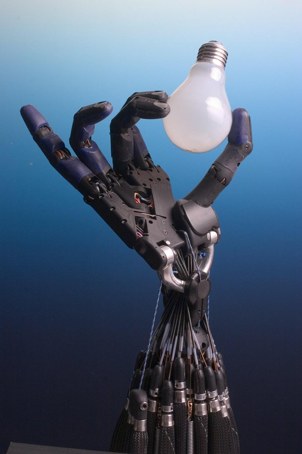 Shadow Hand Bulb large