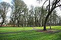 Shadywood Park paths - Hillsboro, Oregon.JPG