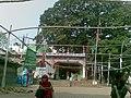 Shah Ali Mazar Mirpur 001.jpg