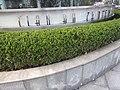 Shanghai (December 10, 2015) - 079.jpg