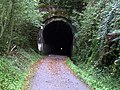Shaugh Tunnel - geograph.org.uk - 1556897.jpg
