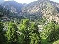 Shekhandeh Bomborate Chitral Pakistan.jpg