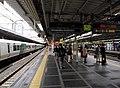 Shinjuku Station Platform 10-11 2013.jpg