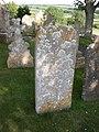 Shipton Gorge, lichens - geograph.org.uk - 1369832.jpg