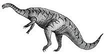 Sketch plateosaurus bulky.jpg