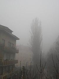 Smog in Sofia