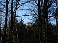 Sommet du Grand Donon vu à travers les arbres.JPG