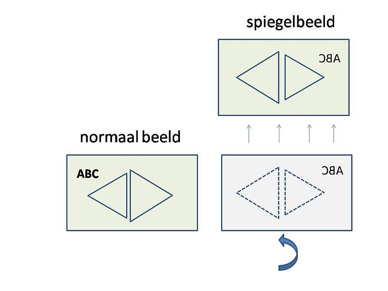 File:Spigelbeeld.jpg