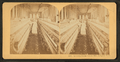 Spinning room, Cotton mill, Langley, S.C, by Littleton View Co..png