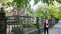 Städte im Wandel - Urbanes Gärtnern (urban gardening) begrünt unser Leben 3.jpg