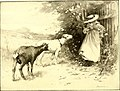 St. Nicholas (serial) (1873) (14578146780).jpg