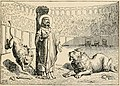 St Ignatius Bishop of Antioch from Little pictorial lives of the saints.JPG