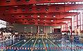 Stadthallenbad, 19. Ströck Austria Meeting 2007.jpg