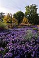 Stadtpark Nürnberg IMGP1841 smial wp.jpg