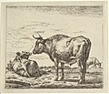 Standing Bull, from Different Animals MET DP828091.jpg