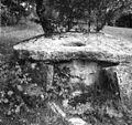 Stara opuščena štirna (vodnjak), Železnica 1964 (2).jpg