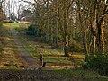 Staunton country park - geograph.org.uk - 416966.jpg
