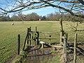 Stile near Victoria Park Farm - geograph.org.uk - 1733918.jpg