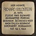 Stolperstein für Richard Goldstein (Cottbus).jpg