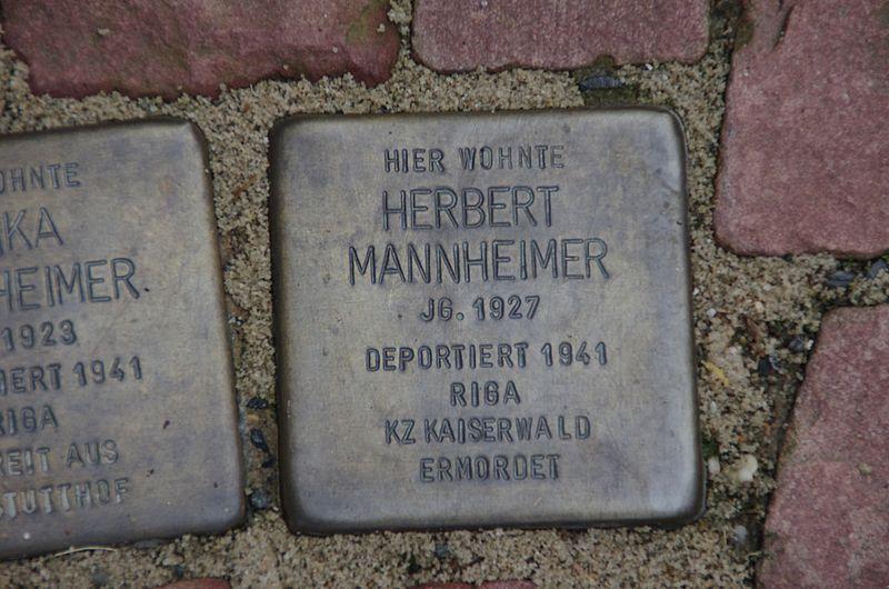 File:Stolpersteine Herbert Mannheimer Bad Wildungen.jpg
