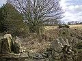 Stone posts - geograph.org.uk - 1752649.jpg