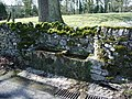 Stone trough - geograph.org.uk - 739594.jpg