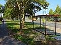 Struppener Straße Pirna (30670065898).jpg