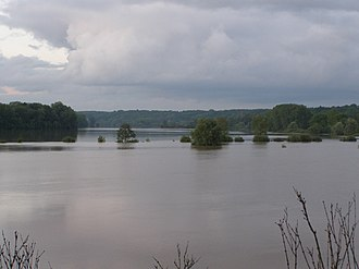 2010 Central European floods -  Vistula broads in Strzyżawa - The riverbed is located approximately 500m from the edge of the forest on the left side