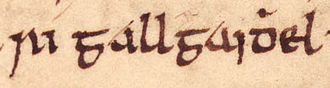 Owain Foel - The title of Suibne mac Cináeda as it appears on folio 39r of Oxford Bodleian Library Rawlinson B 489 (the Annals of Ulster).