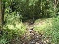 Sunlit stream - geograph.org.uk - 1474265.jpg