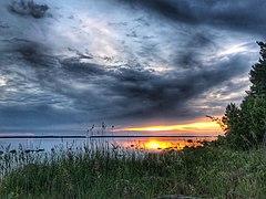 Sunset in Surö Bokskog.jpg