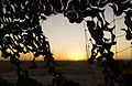 Sunset over Afghanistan Through Camouflage Netting MOD 45153439.jpg
